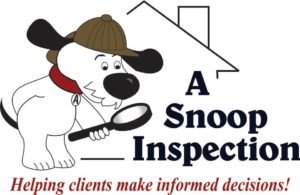 A Snoop Inspection